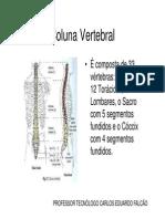 Coluna vertebral.pdf