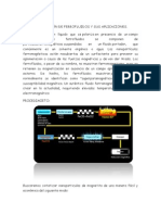 ELABORACIÓN DE FERROFLUIDOS Y SUS APLICACIONES.docx