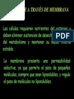 mecanismos de transporte.pdf