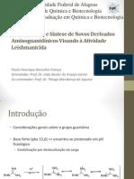 Apresentação defesa Paulo final.pptx