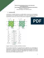 pigmentos (2).docx