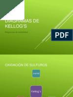 4 - diagramas de kellogs.pptx