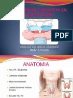 trastornostiroideosenlagestacion-140331220214-phpapp01.pptx