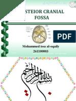 Posterior Cranial Fossa-Decamber2009