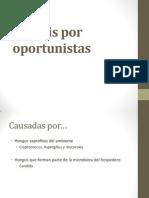 5.Micosis por oportunistas.pptx