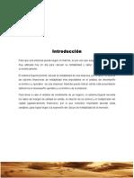 sistema dupont.doc