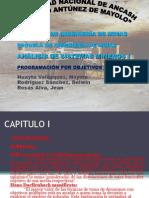 EXPOSICION ANALISIS  Final.ppt