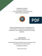 38-TESIS.IP011.L52.pdf