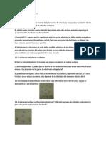 INORGÁNICA SERIES.docx