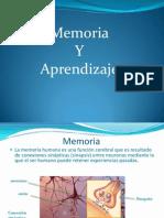 memoria-y-aprendizaje-1211410888893846-9.ppt