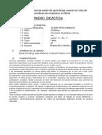 PROPUESTA DE SESION.docx