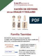 Céstodes I.pptx