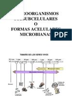GRUPOS MICROORGANISMOS Y METABOLISMO.PPT