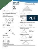 Triangulos y Lineas Notables.pdf