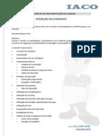 Operacao-Guindaste.pdf