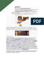 PELICULA.pdf