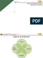AMBIENTE Y ENERGÍA 13-11-13.pptx