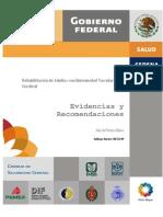 guia rehab evc imss.pdf