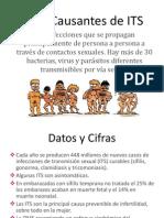 ITS (DIAPOS).pptx