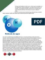La molécula de agua.docx