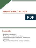 UNIDAD TEMÁTICA_Metabolismo celular.pdf