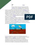 El Ciclo del Nitrógeno1.doc