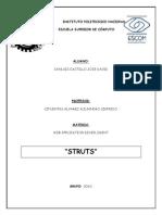 Struts_Sanluis_Castillo_Jose_David.pdf