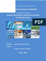 Informe lab N° 1.docx