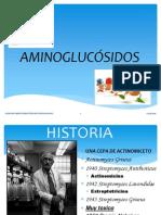 AMINOGLUCÓSIDOSGRUPAL.pptx