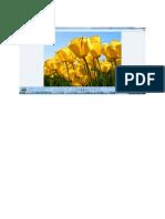 Scribd Upload Doc1