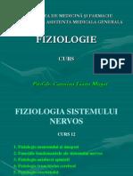 FIZIO AMG12