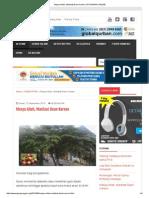 Manfaat Daun Ceri_obat Diabetes _ Piyungan Online