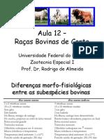 raças bovinas.pdf