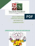 ORIENTACIONES TALLER.pptx