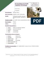 Fiche technique de l'huile de moringa_1.pdf