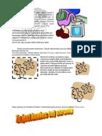 word2007-2.docx