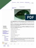 Jade, amuleto milenario ..pdf
