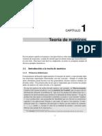 CAPITULOALGEBRALIN.pdf