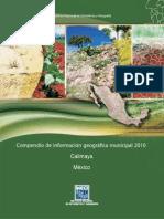 Calimaya 15018.pdf