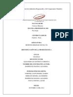 Identificación de la problemática RESPONSABILIDAD 7.pdf