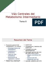 Vias Centrales del Metabolismo Intermediario.pdf