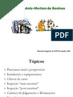 INSPEÇÃO DE BOVINOS.curso.ppt