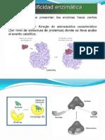 1.Cinética enzimática.pptx