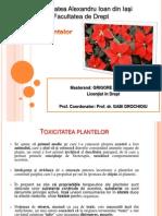 PLANTE-TOXICE- (1).pptx
