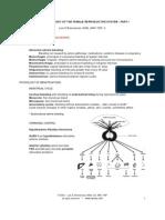 gyn-pathophys 1.pdf