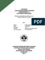 Laporan - Uji Phenylhydrazine