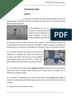 Cobre_castellano.pdf