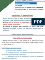 AULA 02 ENGENHARIA BIOQUIMICA PROF. RODRIGO MELO.pdf