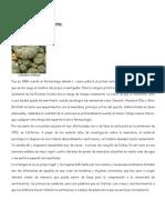 Mescalina y Precepción.docx