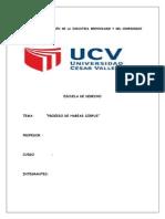 Articulo 200 PROCESO DE HÁBEAS CORPUS (1).docx